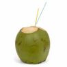Coco Verde Orgânico Un - OSM