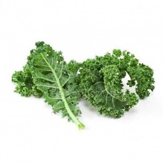 Couve Kale Orgânica Bdj - OSM