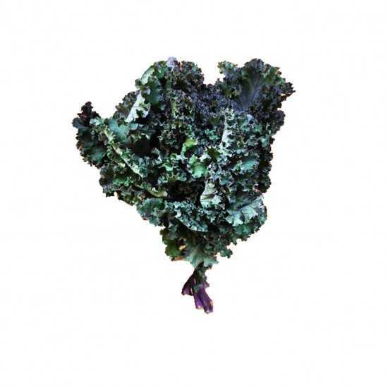 Couve Kale Roxa Orgânica...
