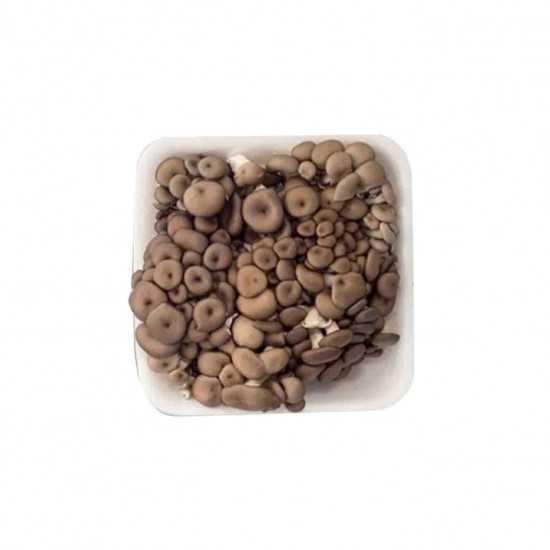 Cogumelo Shimeji Preto Orgânico Bdj 200g - OSM