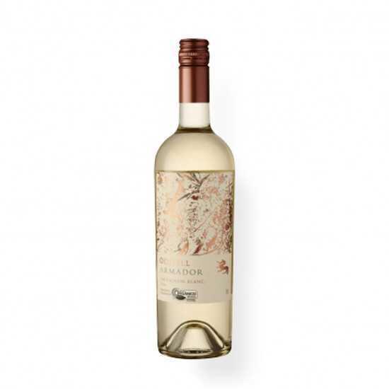 Vinho Orgânico Sauvignon Blanc 2018 750ml - Armador