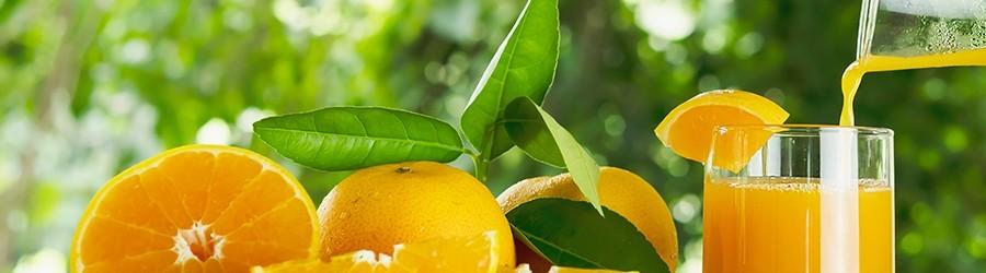Bebidas Orgânicas direto do produtor à venda no Mercado Orgânico