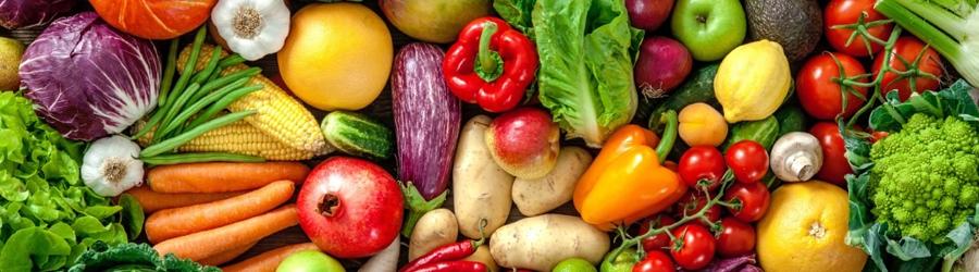 Hortifruti Orgânico direto do produtor à venda no Mercado Orgânico