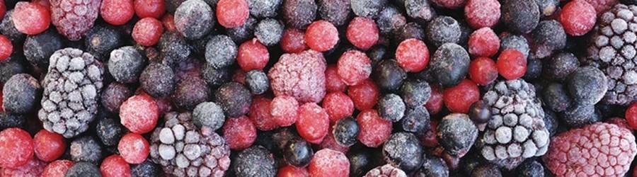 Congelados Orgânicos direto do produtor à venda no MercadoOrganico.com
