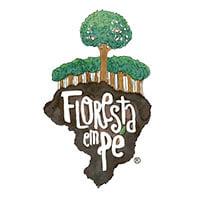 Floresta em Pé